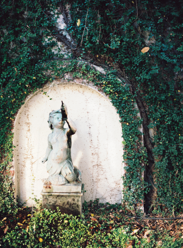 Fountain  under an arch of green ivy