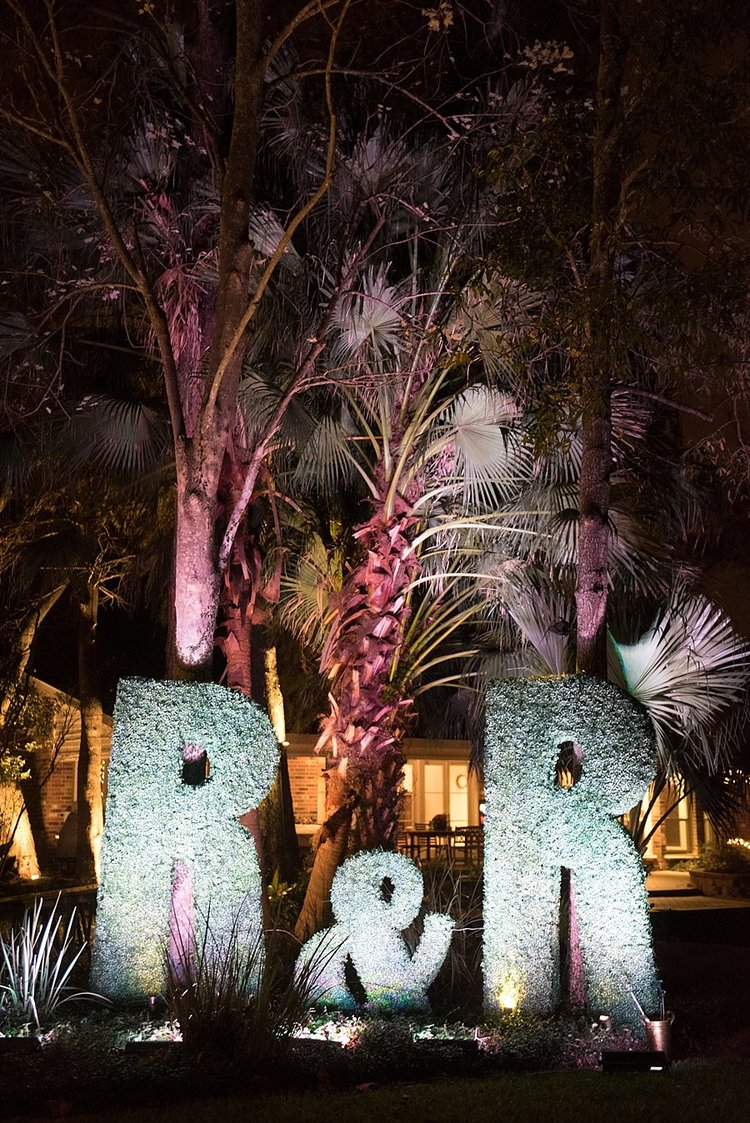 large initial letters made of greenery with light shining on them and palm trees blowing in the background
