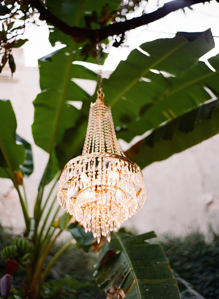 crystal chandelier hanging from a tree branch with banana plant in background