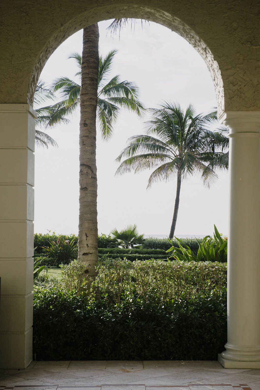 Photo of palm trees through an archway